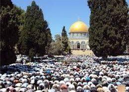 الجاليات والمؤسسات والفعاليات الفلسطينية في الشتات ـ أوروبا