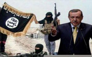 """داعش"" وأردوغان واللاعب الأميركي ! بقلم: ثريا عاصي"