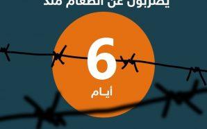 لليوم السادس ..5 أسرى إداريين يُواصون الإضراب المفتوح عن الطعام