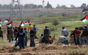 الجبهة الشعبيّة: النظام السياسيّ الفلسطينيّ بات أشبه بحكم الحزب الأوحد…