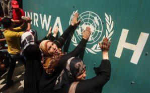 الأونروا: أكثر من نصف سكان غزة قد لا يكون لديهم…