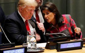 """هايلي تتحدّث عن صفقة القرن """"أمن إسرائيل فوق كل شيء"""""""