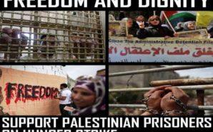 الجبهة الشعبيّة لتحرير فلسطين: مُخططات التهجير الصهيونية ضدّ شعبنا لم…