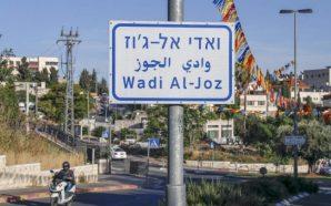 """""""الاستثمار الإماراتي"""".. استحواذ على ما تبقّى من الأرض الفلسطينية"""