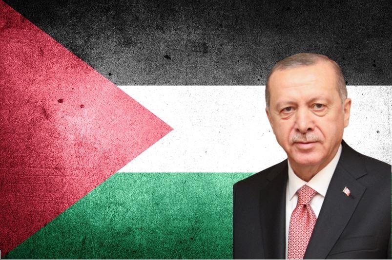 """عملية حارس الجدار من المنظور التركي: أردوغان بصفته """"المدافع عن فلسطين""""؟"""